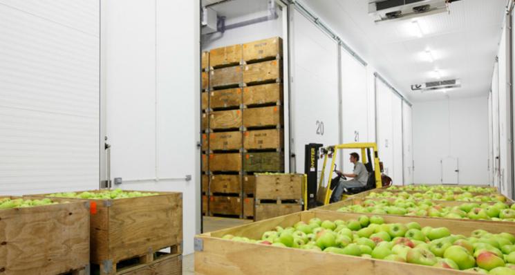 Storage Control Systems Ltd