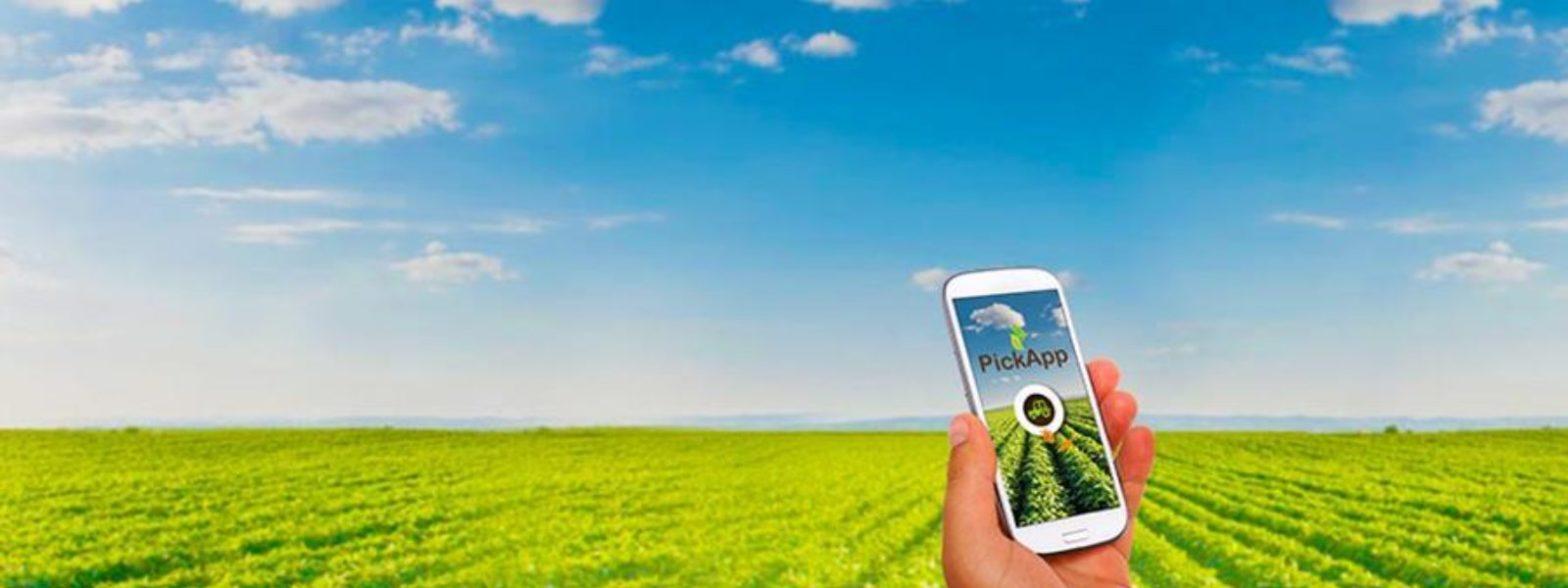 Meet Pointer Intelligent Agri-Systems Ltd
